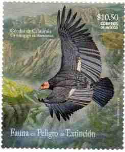08 Mexico 2009