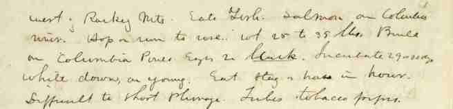 04 Baird 1847 - text 2
