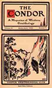 04 Condor 1902