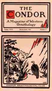 05 Condor 1924