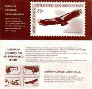 13 Cachet - 1971 USPS - reverse