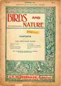 1906 Birds and Nature