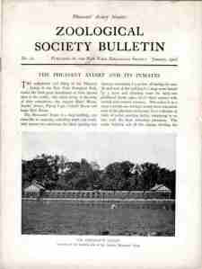 1906 Zoological Society Bulletin