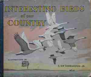 1945 Interesting birds