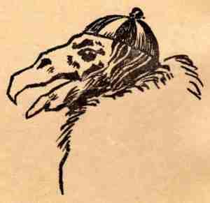 05 Swarth 1929