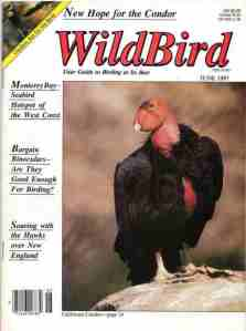 03 Wildbird - Jun 1987
