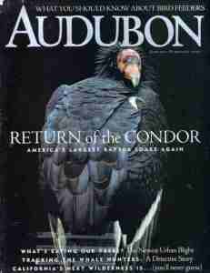 09 Audubon - Jan-Feb 2000