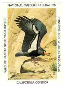 01 Conservation stamp - 1978 NWF