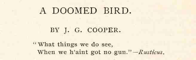 03 Cooper 1890.jpg