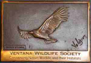 05 Plaque - VWS - small