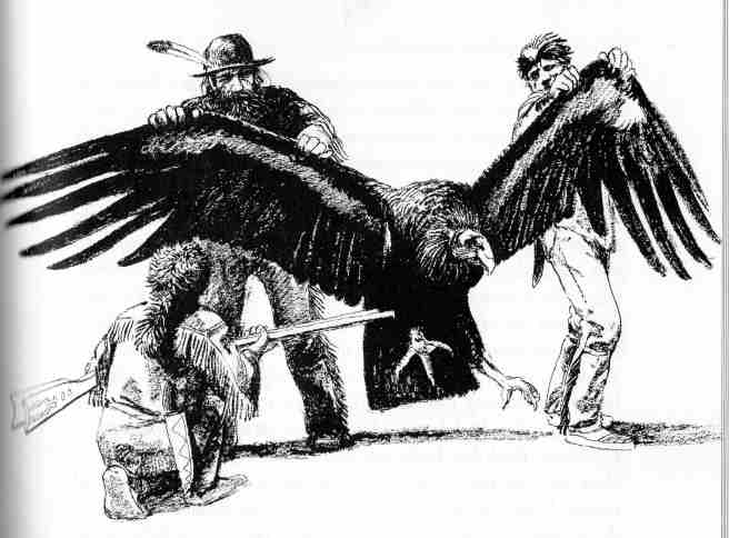 More black & white illustrations from books: 1944-1996