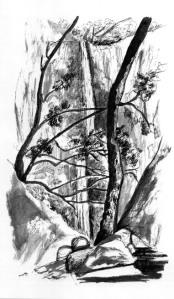 01-bush-1880s-wollman-1986