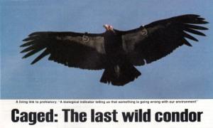 01b US News & World Report 1987 - 2
