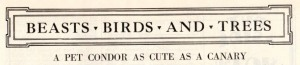 02-article-title-literary-digest-1928