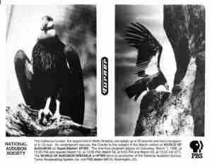 06 NAS-PBS 1986