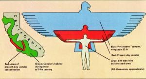 05 Conrad - Caras 1979