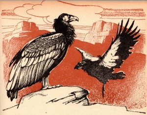 03c Illustration - Josephy 1951