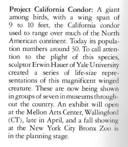 07 Text - National Sculpture Review 1981-82