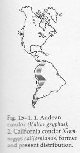 03b Grzimek - range map