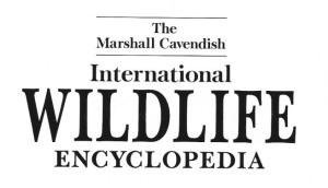 04' Cavendish 1994- title page