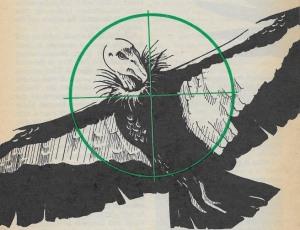01 Fox 1973