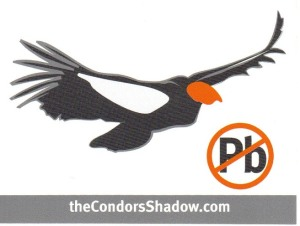 01 Decal - Condors Shadow