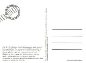 06b Postcard - Simon & Schuster - reverse