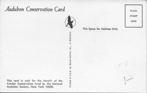 10b Postcard - NAS - Hines - reverse