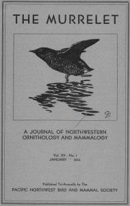 04 Murrelet - front cover