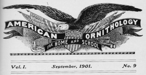 01 Masthead - American Ornithology for Home and School
