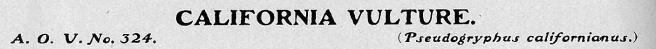 02 Wilcox 1901 - Title