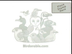 08b Postcard - Birdorable - vultures of the world