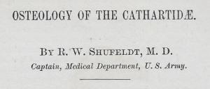 09 Title - Shufeldt 1883