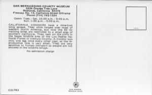 10b Postcard - San Bernardino Co Museum