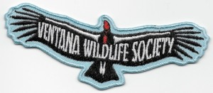 08 Patch - VWS