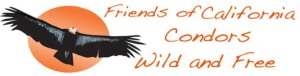 01 Friends of California Condors Wild and Free