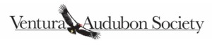 02 Ventura Audubon Society
